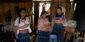 Mexican indigenous kids' schooling interrupted by armed conflict, Covid-19
